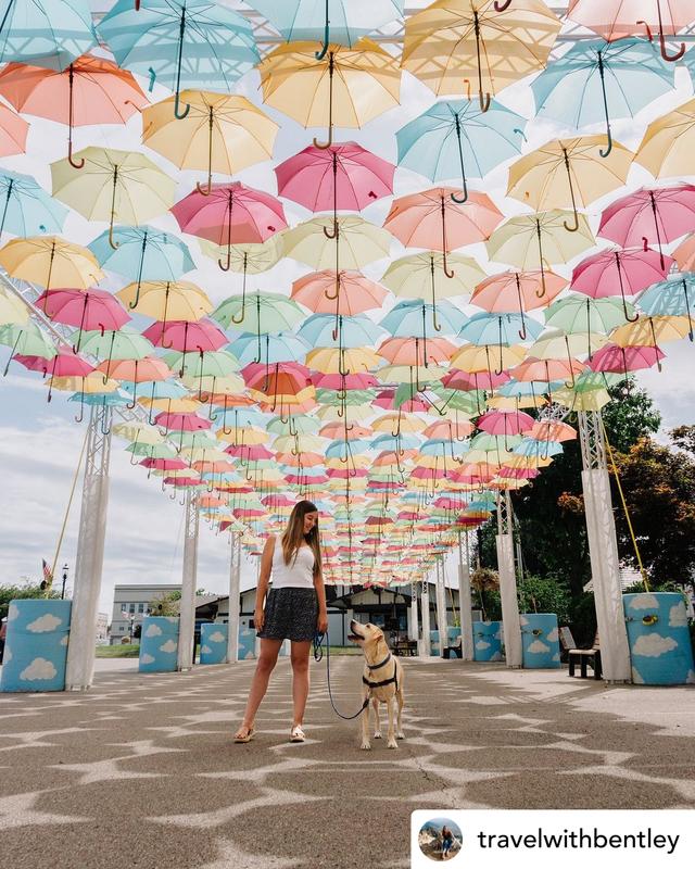 Umbrella Sky Project - Batesville, IN'216